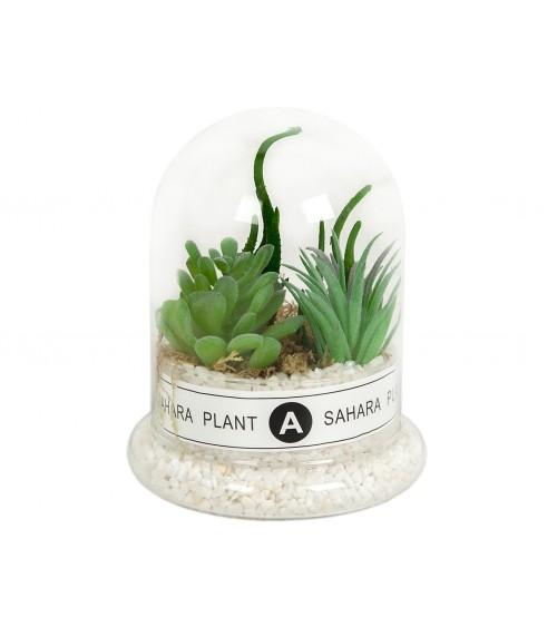 Cactus Artificial C/Campana Vidrio