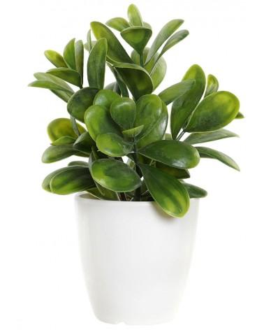 Planta Artificial con Maceta Blanca